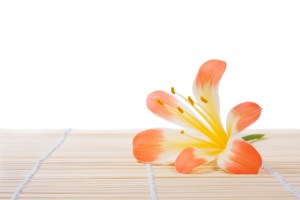 Flower on bamboo. Isolated on white