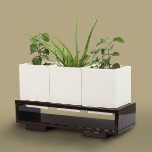 Planter Boxes Greenergy Ventures