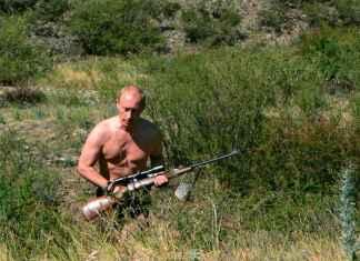 Vladimir Putin hunting