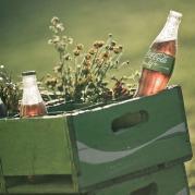 Coca-Cola Life 2