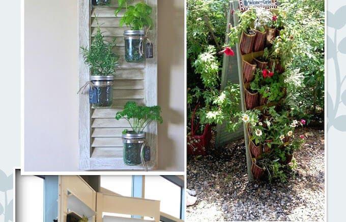 DIY urban gardening