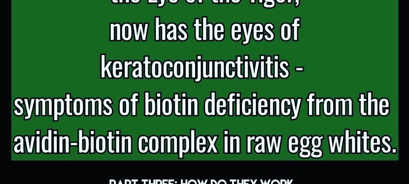 DIY Biotin Deficiency- Book Excerpt of the Week