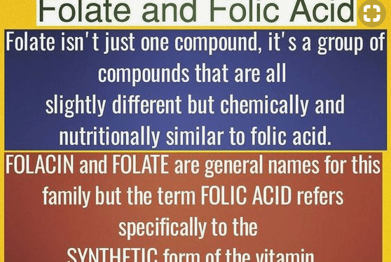 The Difference Between Folate and Folic Acid – Book Excerpt of the Week