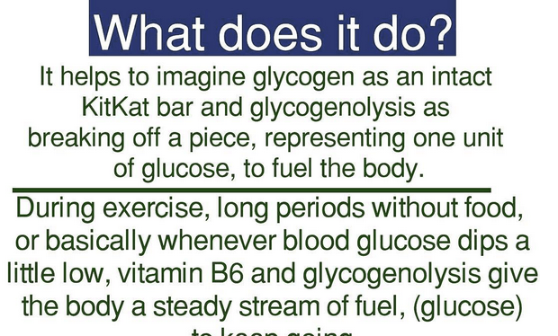 What does Vitamin B6 do? Book Excerpt of the Week