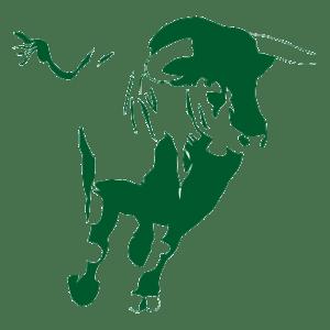 Logo Green Finance Observatory