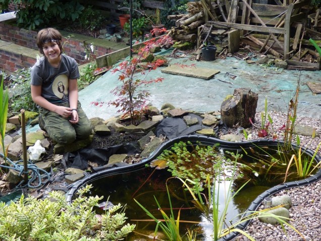 A pond is great for mosquitos