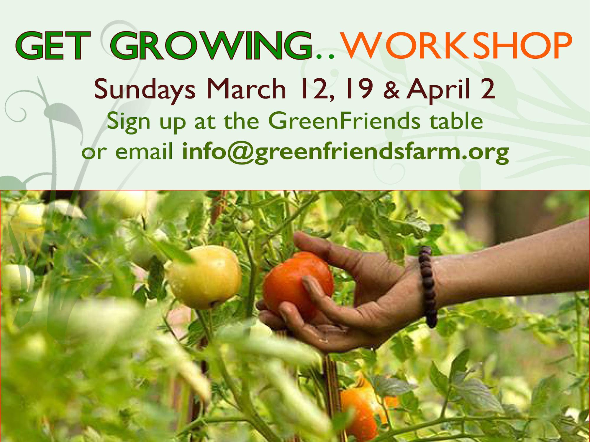 Organic Gardening Workshops