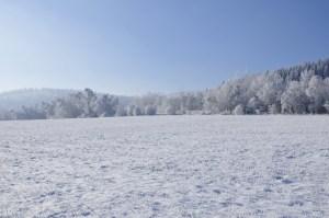 _zima 02