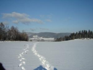 zima 06