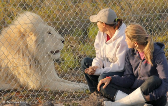 Cat and Liz with Neptune, Panthera Africa