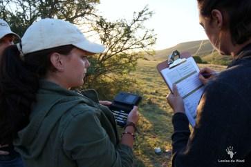 Stevie Strydon helping to set up camera traps at Tented Eco Camp, Gondwana