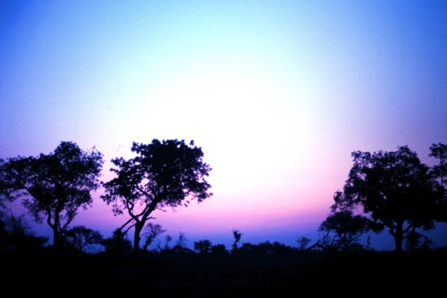 Sunset in South Africa's Kruger National Park