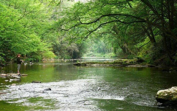 Things to do in Asheville NC: Fishing Linville River