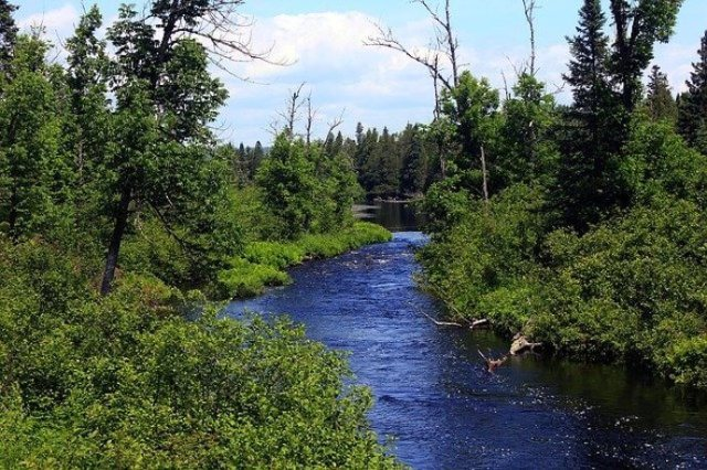20 National Forests - Midwest