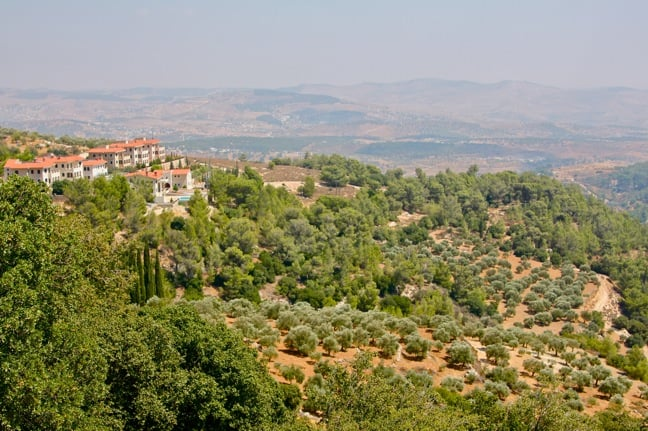 View from Dibeen Forest Reserve, Jordan