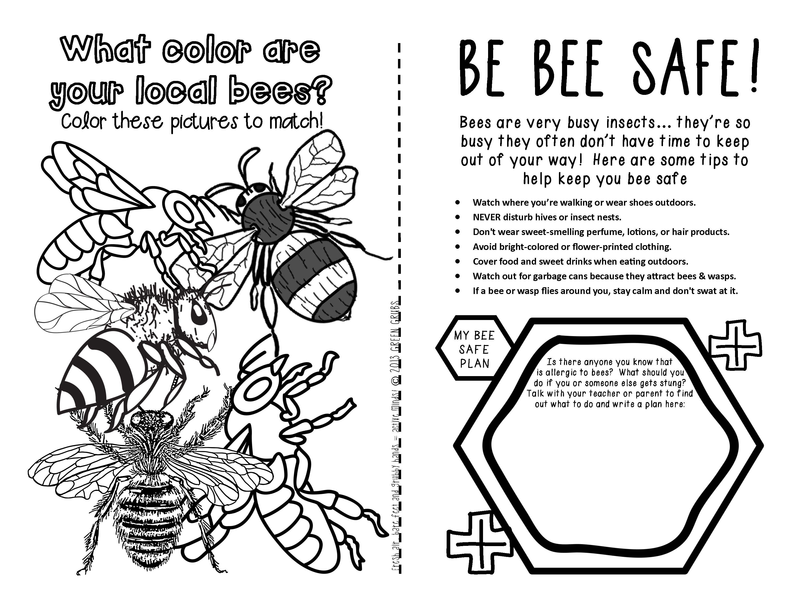 Bees A Booklet Of Activities Celebrating Honey Bees