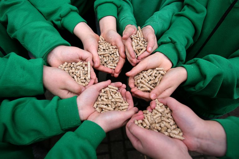 Images like this one, young hands holding wood pellets, are vigorously promoted by a wood products industry that wants the public to perceive it as green. But recent studies have shown that biomass carbon neutrality claims are false. Scientists and activists have become increasingly alarmed by governments, energy producers, and forest products companies that continue to tout outdated Kyoto Protocol carbon neutral claims. Meanwhile, the UN has done nothing to alter its position, leaving activists with the long shot of litigation as one of their only tenable actions. Photo credit: #ODF on Visual hunt / CC BY.