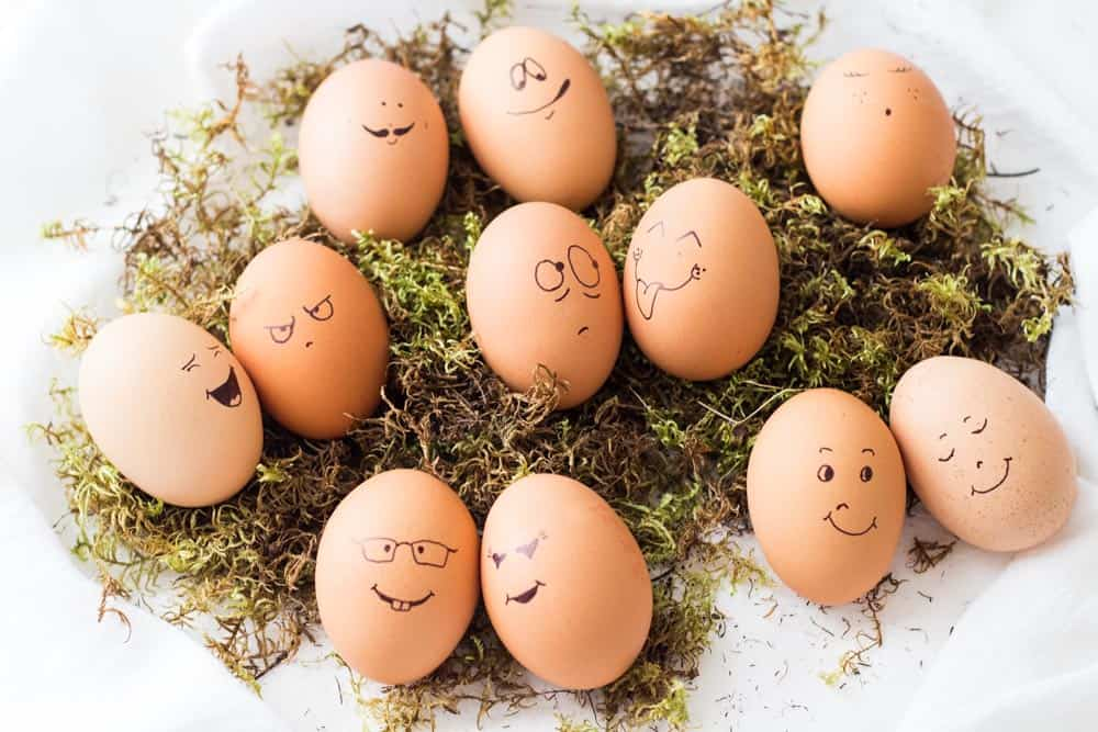 Several decorated Easter Eggs with silly faces on a bed of moss.