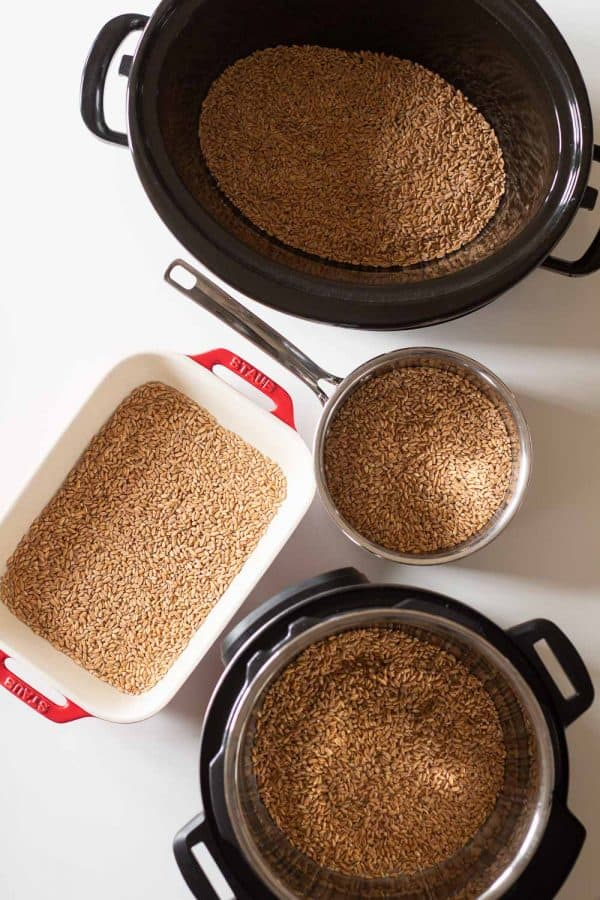 Options on How to Cook Farro (farro in slow cooker, in instant pot, in baking dish, in pot)