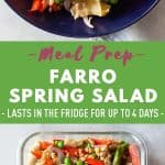 Farro Spring Salad Pin Collage Image