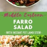 Middle Eastern Farro Salad Pin Collage