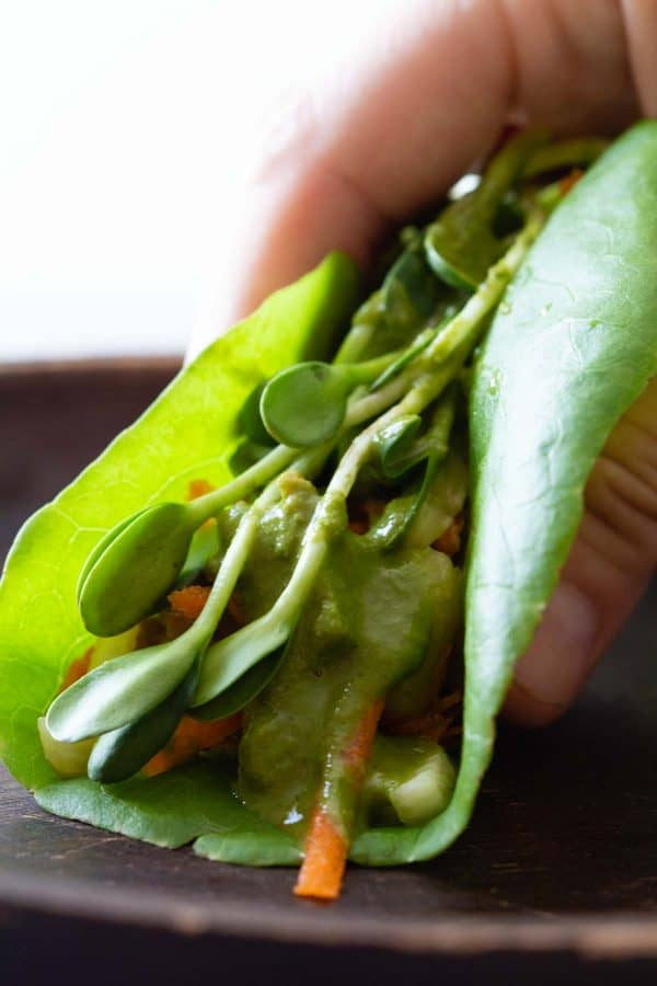 Folded chicken lettuce wrap close up