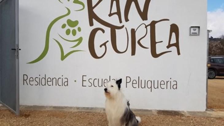 Kangurea Aiegi residencia canina