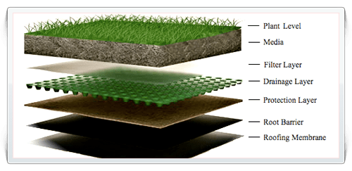 Extensive Green Roof Layers
