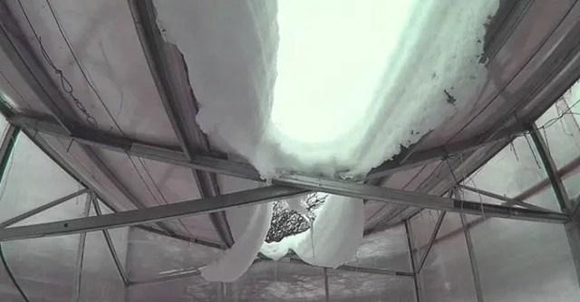 "Теплица ""m-greenhouse"" -GreenhouseBay.ru"