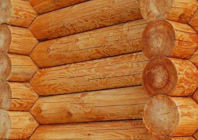 Почему дома из кедра и лиственницы элитные - сруб из лиственницы - GreenhouseBay.ru