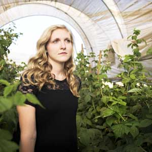 why plants grow faster in a greenhouse feature image.jpg