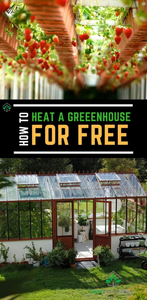 How to heat a greenhouse for free: You cannot heat a greenhouse completely free! you will always have to spend some money initially. The best method is to heat the greenhouse using solar powered panels as the life of these panels are too long so it will keep on heating your greenhouse for quite long