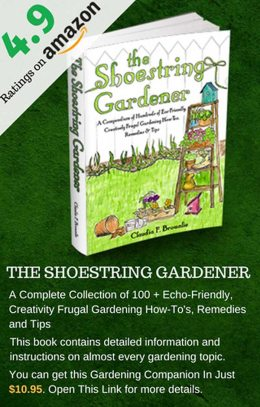 best book on gardening the shoe string gardener