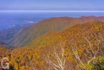 山頂付近から日本海側を望む