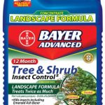 Bayer-Advanced-701525-12-Month-Tree-and-Shrub-Insect-Control-Landscape-Formula-Concentrate-1-Gallon-0