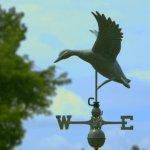 Good-Directions-9605V1-Landing-Duck-Weathervane-Blue-Verde-Copper-0-1