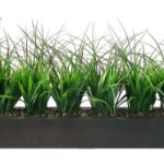 Laura-Ashley-Green-Grass-in-Contemporary-Wood-Planter-0