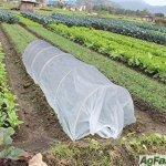 4X20Ft-Grow-TunnelMini-Greenhouse-Hoophouse-Kit-09oz-725-ft-Floating-Row-Cover14Dia-Hoops-0-0