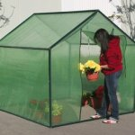6-Ft-X-6-Ft-Greenhouse-0