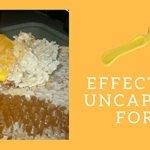 6-Piece-Beekeeping-Supplies-Starters-Kit-Bee-Hive-Smoker-Uncapping-Fork-Tool-Bee-Brush-Frame-Grip-Extracting-Scraper-Bee-Feeder-Tool-0-2