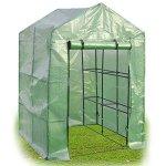 8-Shelves-Greenhouse-Portable-Mini-Walk-In-Outdoor-Green-House-2-Tier-0-2