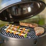 Char-Griller-Akorn-Kamado-Kooker-Charcoal-Barbecue-Grill-and-Smoker-0-1