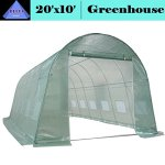 DELTA-Canopies-Large-Heavy-Duty-Green-House-Walk-in-Greenhouse-Hothouse-20-X-10-125-Pounds-0