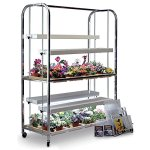 GrowLab-II-Two-Tier-Indoor-Garden-0
