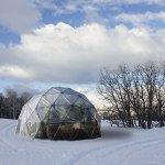 HARVEST-RIGHT-HR-GH24-24-ft-Geodesic-Greenhouse-Kit-450-sq-ft-0-1