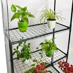 Quictent-Greenhouse-Mini-Walk-in-3-Tiers-6-Shelves-102lbs-Max-Weight-Capacity-Portable-Plant-Garden-Outdoor-Green-House-56x29x77-0-2