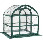 SpringHouse-Greenhouse-with-green-frame-and-clear-body-with-UV-protection-for-longevity-0