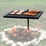 Texsport-Heavy-Duty-Barbecue-Swivel-Grill-for-Outdoor-BBQ-over-Open-Fire-Pack-of-2-0-0