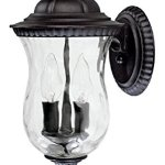 Black-Ashford-2-Light-Outdoor-Wall-Sconce-0-0