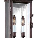 Troy-Lighting-Vintage-Light-Outdoor-Wall-Light-Vintage-Bronze-Finish-with-Clear-Glass-0